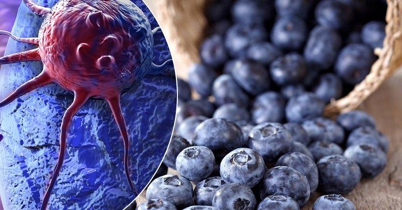 продукты для здоровья всего организма