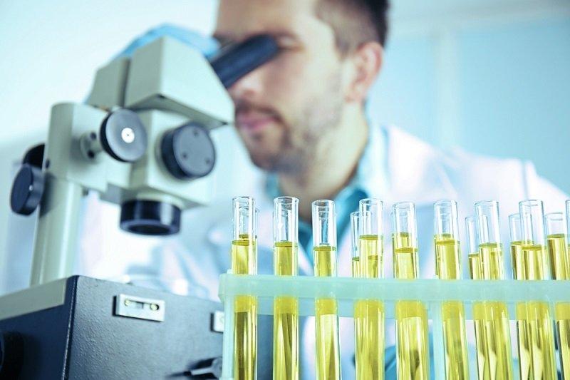 причины обострения мочекаменной болезни