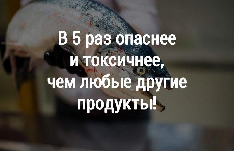 красная рыба опасна