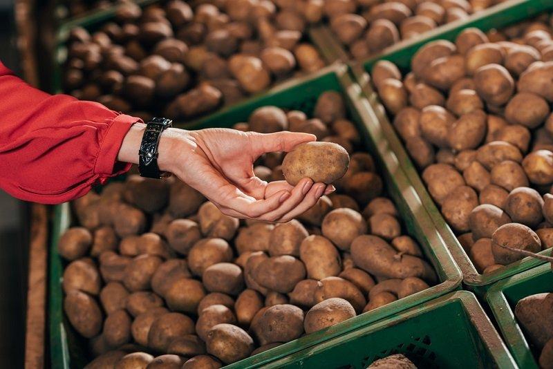 вред картофеля на организм