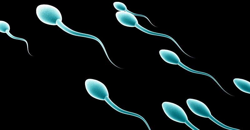 контрацепция для мужчин