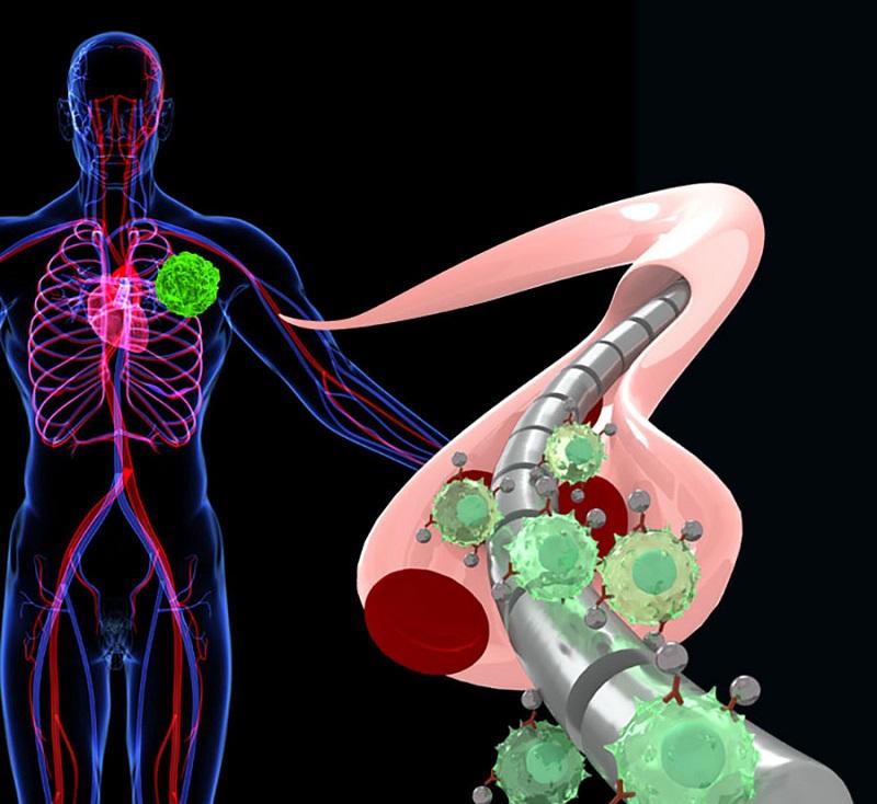 ранняя диагностика рака анализы