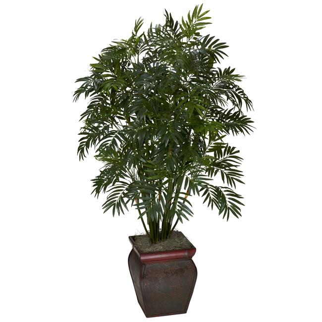 Эти растения — природные очистители воздуха! Хотя бы один вазон должен стоять дома…