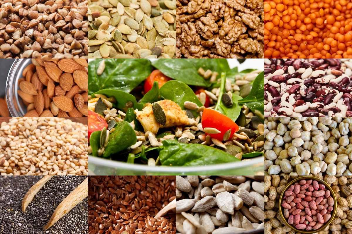 Список растительных продуктов с высоким содержанием белка