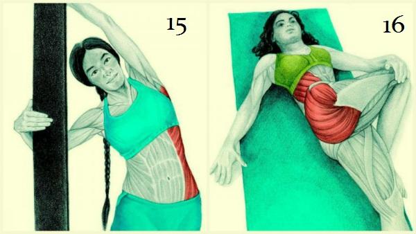 exercícios para alongamento