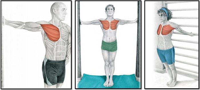 растяжка мышц