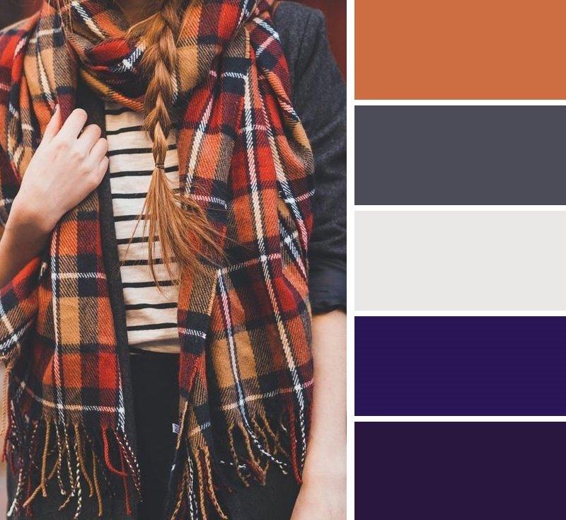 сочетание цветов фиолетовый