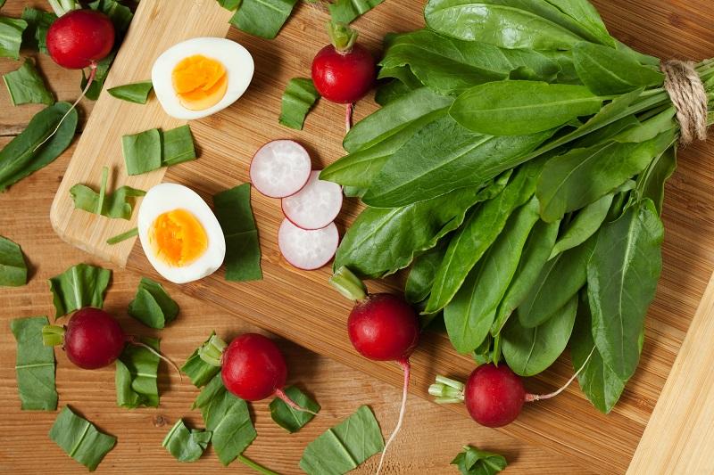 вкусные рецепты со щавелем