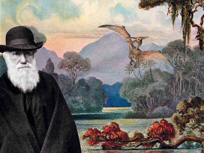 Вот оно, доказательство теории Дарвина! 6 органов, которые тебе больше не нужны.