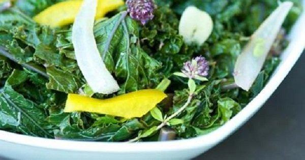 Салат против ломкости костей. Замени дорогие лекарства тем, что растет у тебя в огороде!