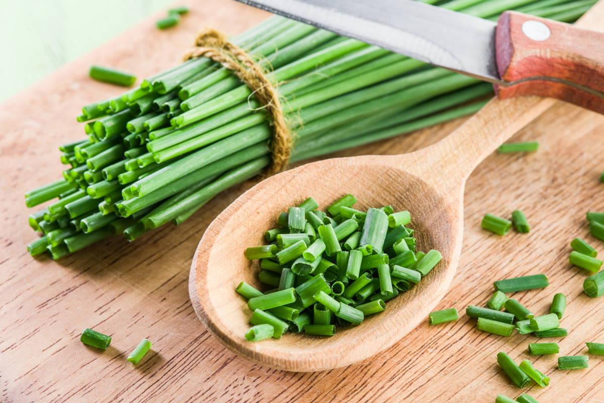 салат капуста белокочанная кукуруза
