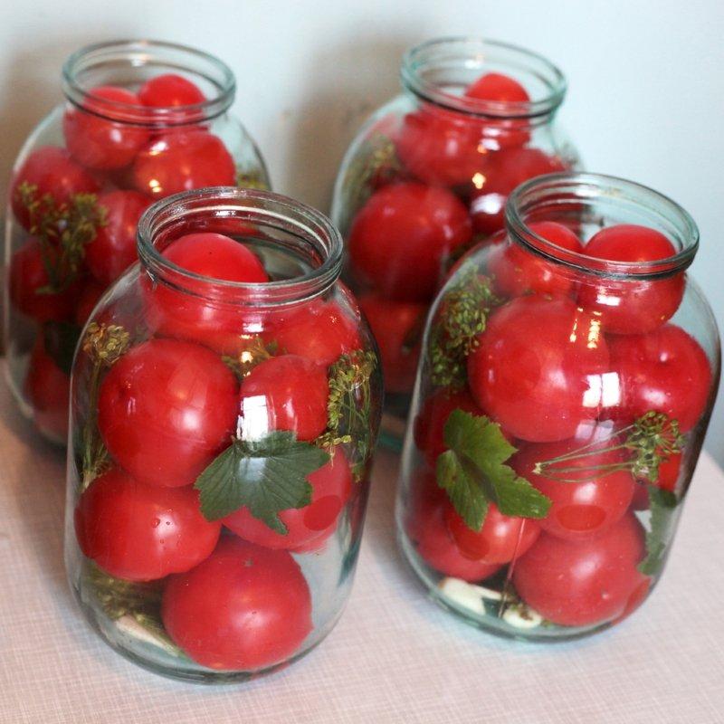 Самые вкусные помидоры