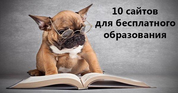 10 мировых онлайн-ресурсов для бесплатного образования. Утоли свою жажду знаний!