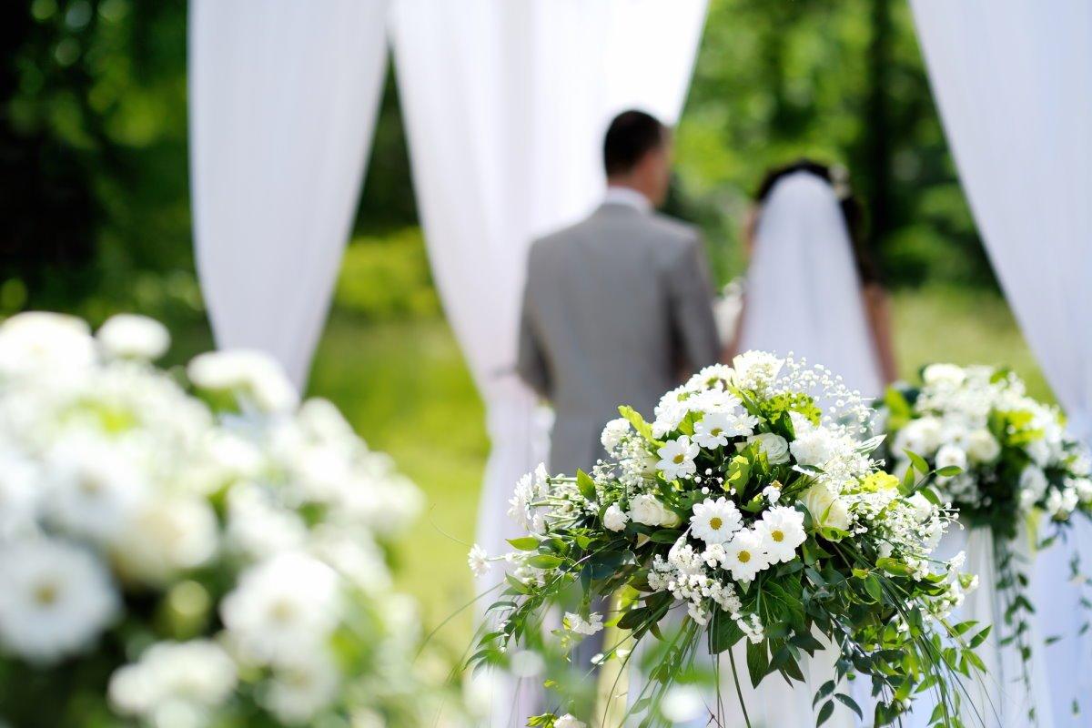 Упадок и запустение, или До чего довела квартиру свекрови невестка