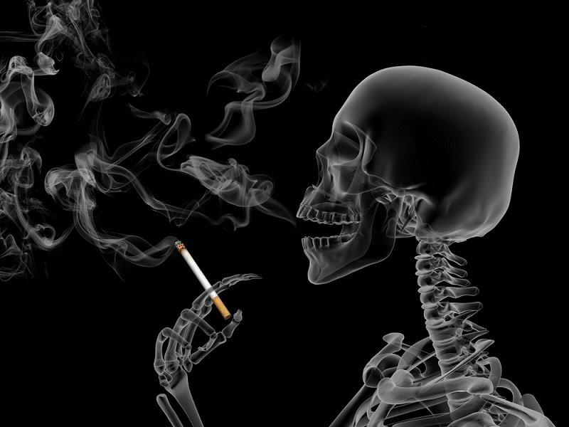 табак пасленовые