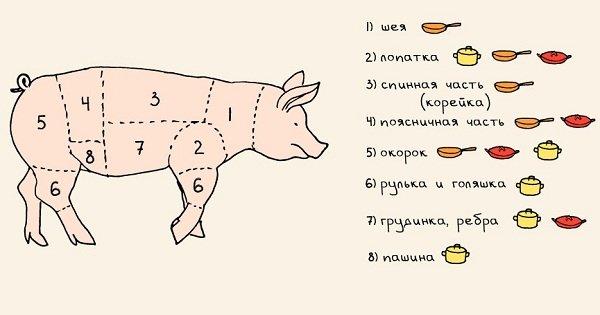 Инфографика: 20 полезных шпаргалок, которые стоит использовать всем, кто готовит.