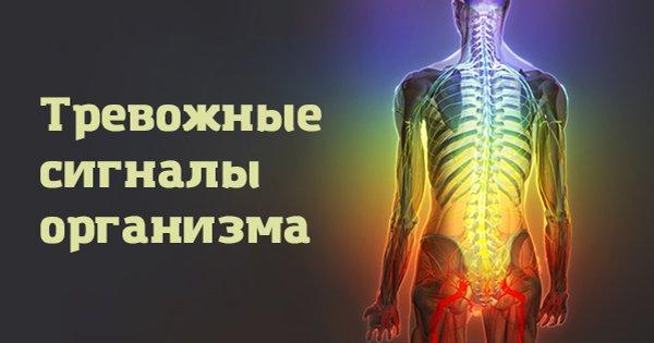 Сигналы организма, которые нельзя игнорировать: не рискуй своей жизнью!