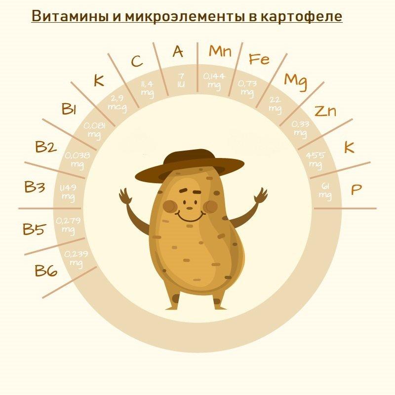 польза картофеля в питании человека