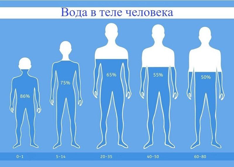 Доктор Комаровский: «Прикиньте, сколько жидкости вы теряете. Вот и весь питьевой режим, малыши!»