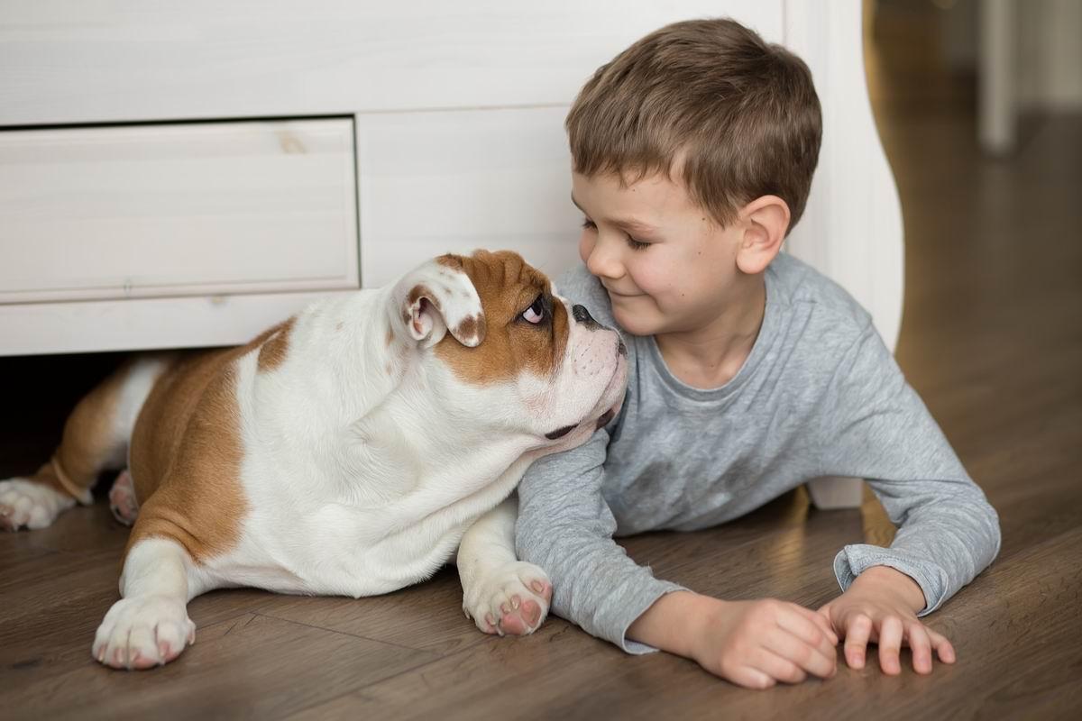 Собака для семьи с детьми: породы, которых лучше избегать