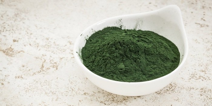 растительный белок в чем содержится