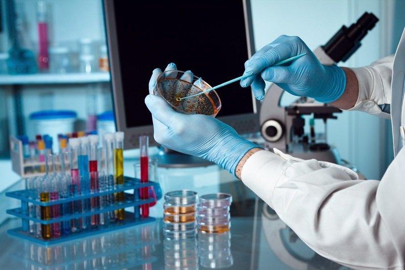 состав вакцин и механизм действия