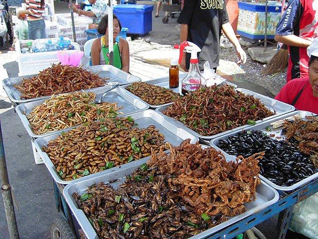скорпионы, кузнечики, плавунцы