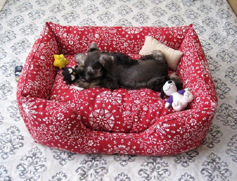 Что можно сделать для собаки своими руками игрушки