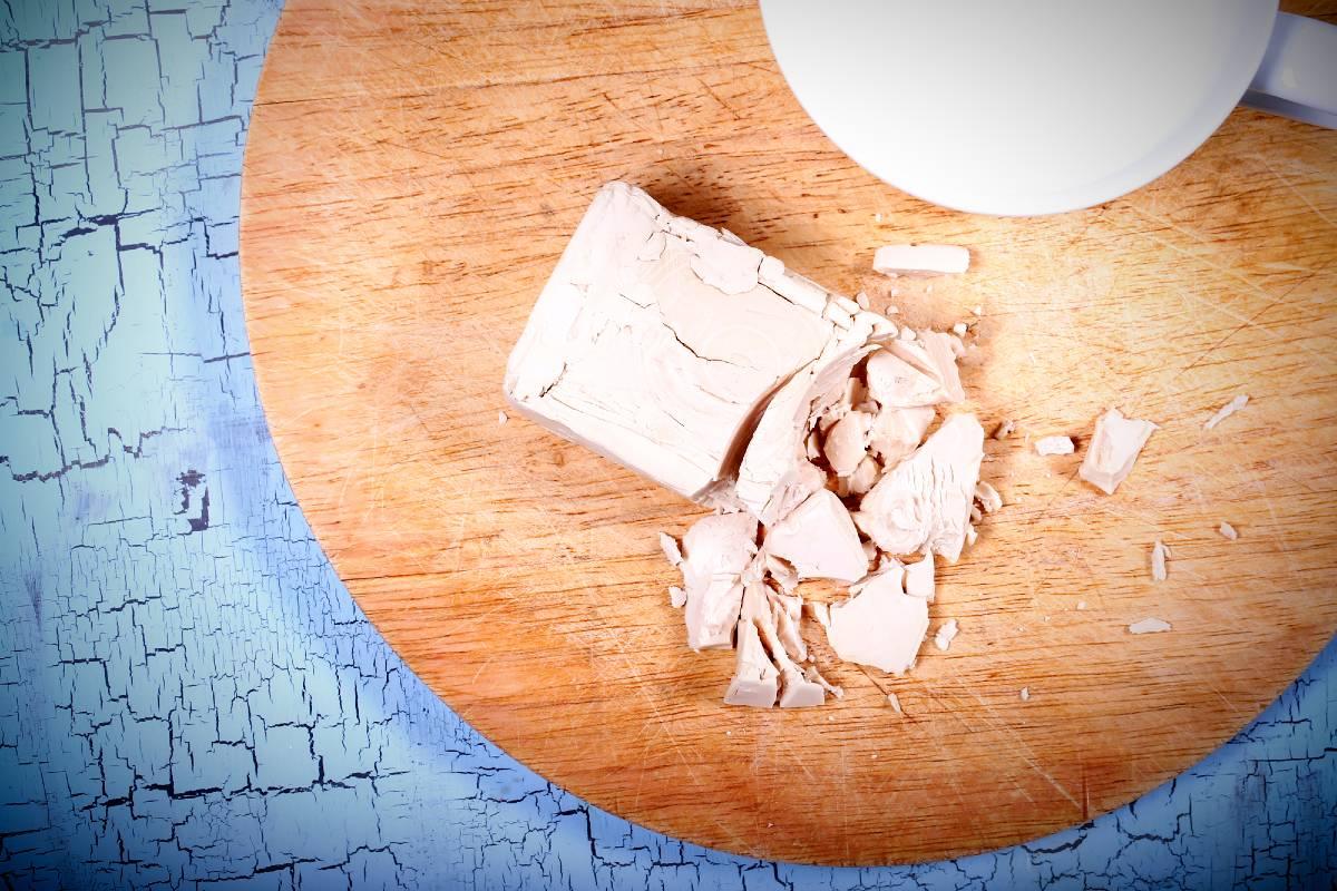 виды дрожжей для хлеба