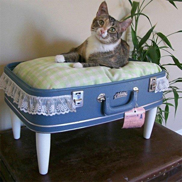 кровать для кота из чемодана