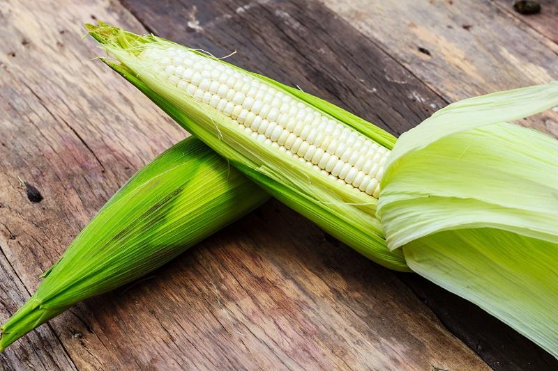 кукурузные рыльца противопоказания