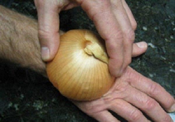 как использовать лук