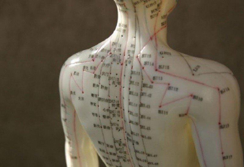 меридианы в организме человека