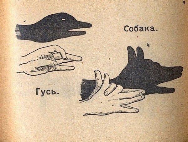 тени животных при помощи рук