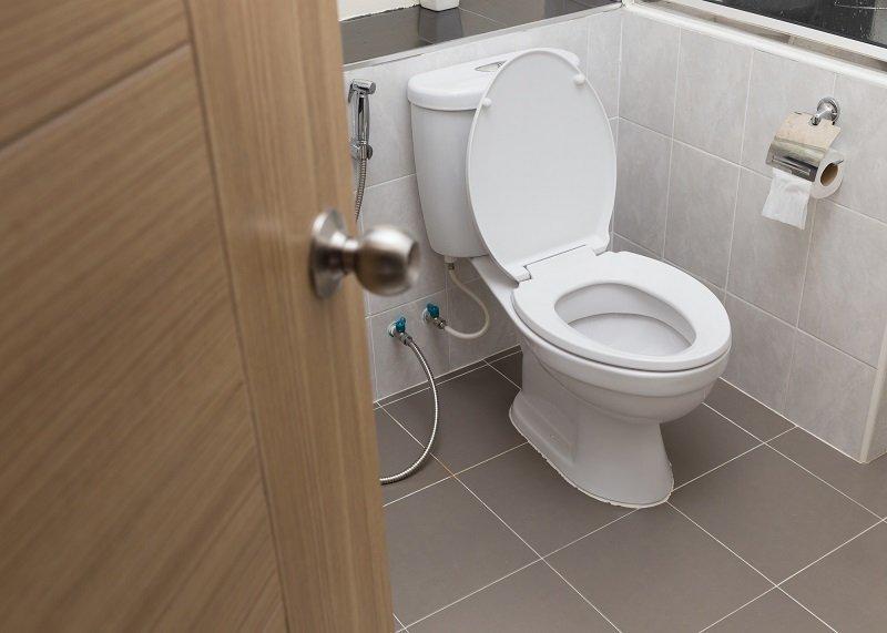 гигиена и санитария