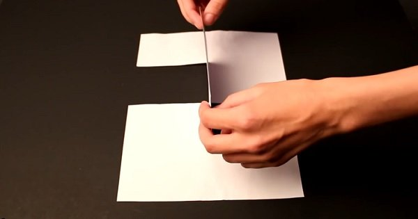 10 трюков с бумагой, которые придутся по душе не только детям, но и взрослым. Сделать их очень просто!
