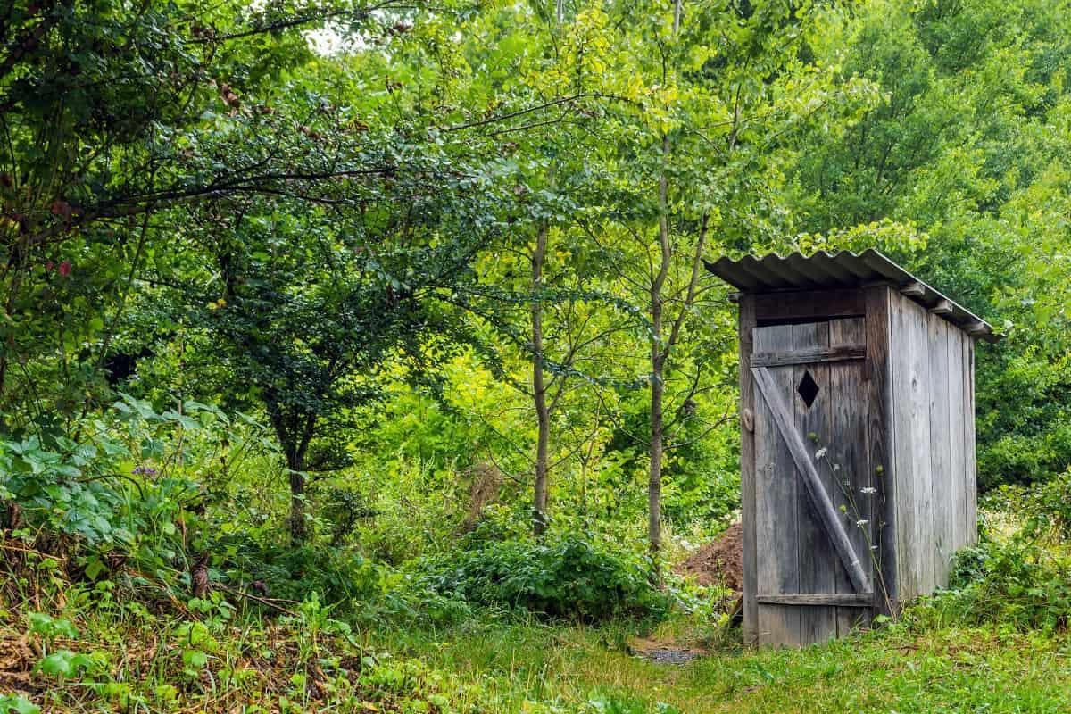 Грамотное обустройство дачного туалета без откачки