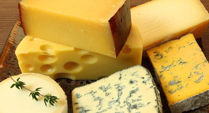 твердый сыр на молоке