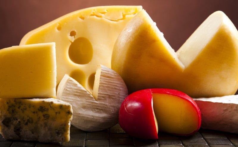 твердый сыр из свежего молока
