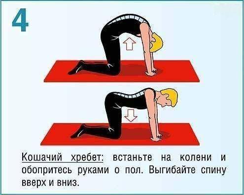 Упражнения группы мышц домашних условиях