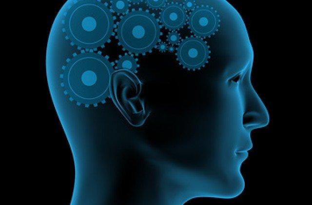 Ученые узнали, какие участки мозга отвечают зазначение сказанных нами слов