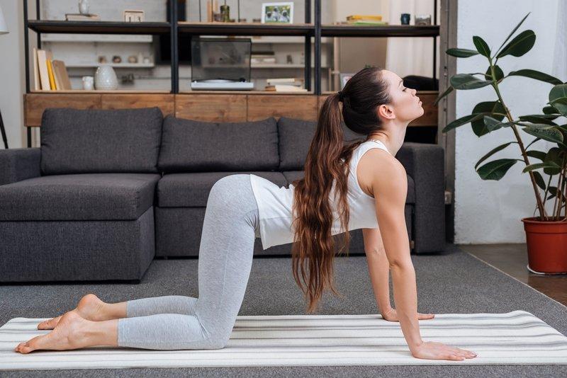 упражнения в зале для спины