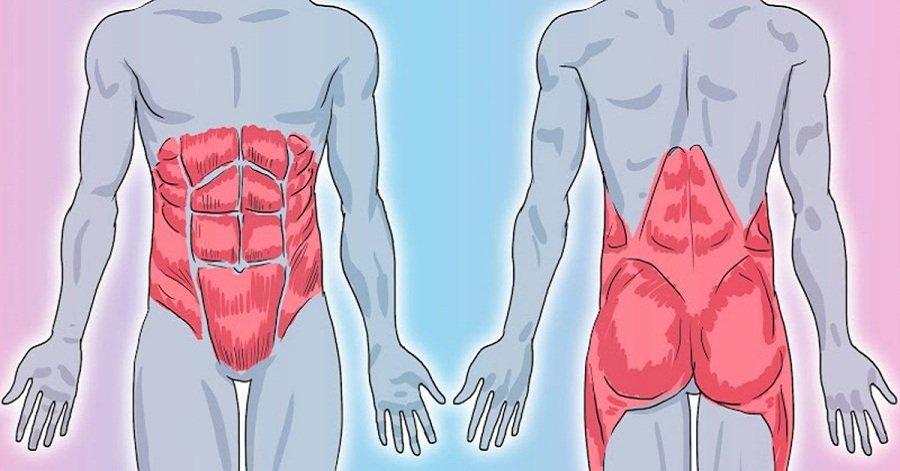 Слабый мышечный корсет позвоночника что делать