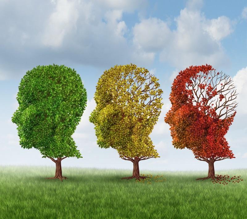 упражнения для развития долговременной памяти