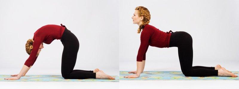 упражнения для больной спины в домашних условиях