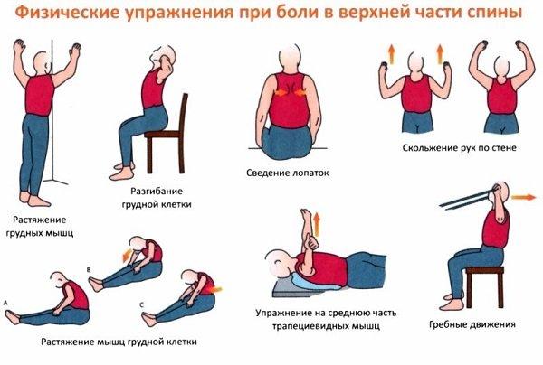 Пилатес упражнения для грудного отдела