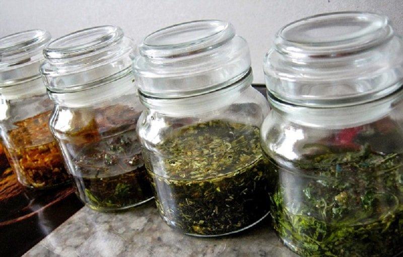 успокоительные травы для нервной системы