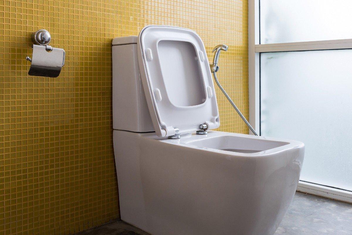 Почему нельзя устанавливать подвесной унитаз и что еще запрещает сантехник Советы,Ванная,Ремонт,Сантехника,Унитаз