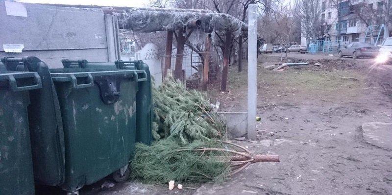 животные и новогодняя елка