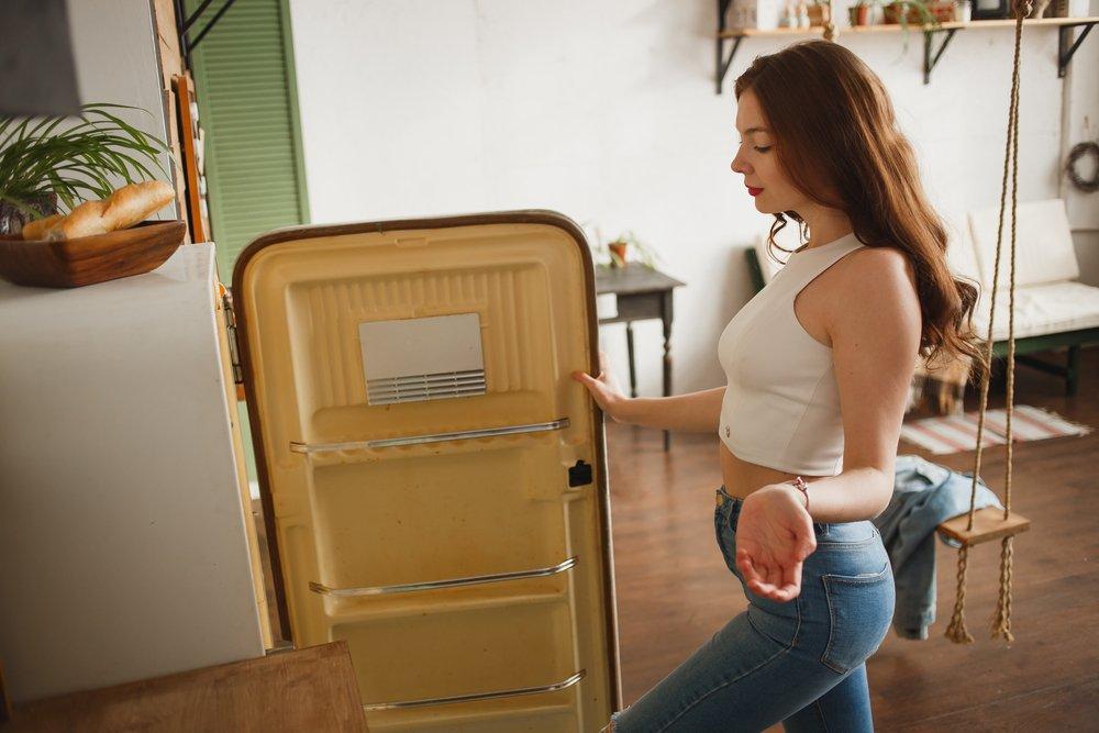 советский холодильник фото